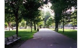 公園でピクニックデート