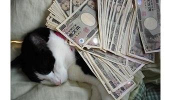 お金持ちは質素で堅実