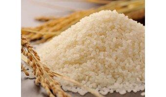 10,000円あたりお米が20kgもらえる福島県湯川村