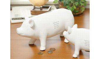 節約家が選ぶ現金還元のクレジットカード