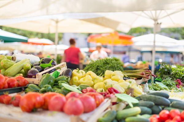 安くて栄養のある野菜12選|低価格で栄養価の高い野菜を選ぶ